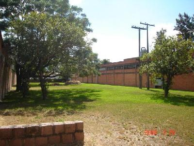 Terreno possui um galpão de 1.000m  ou -, área ideal para condomínio.